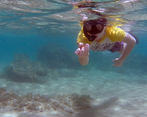 Snorkeling-Mozambique